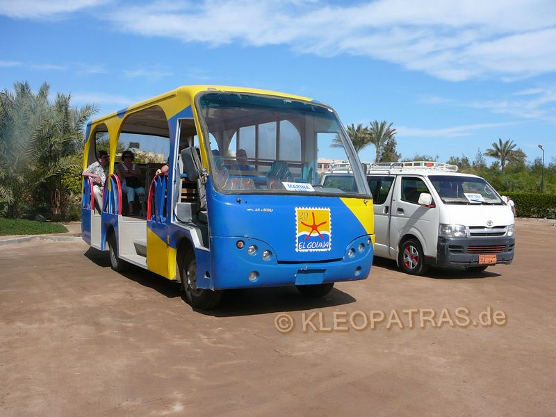 Elgouna bus